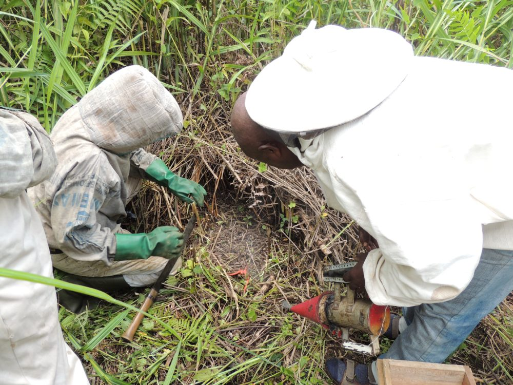 RDC-ULB-Cooperation-5