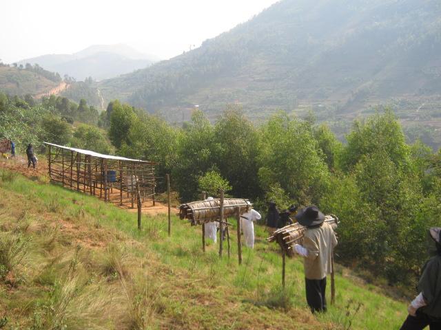 Rwanda-ONG-Caritas-2