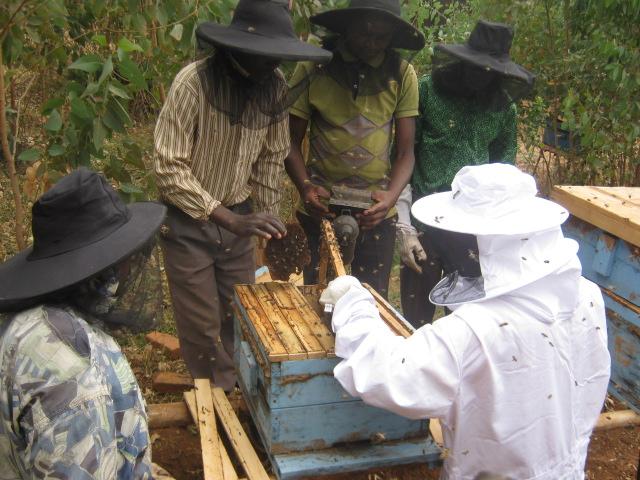 Rwanda-ONG-Caritas-5