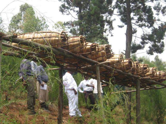 Rwanda-ONG-Caritas-6