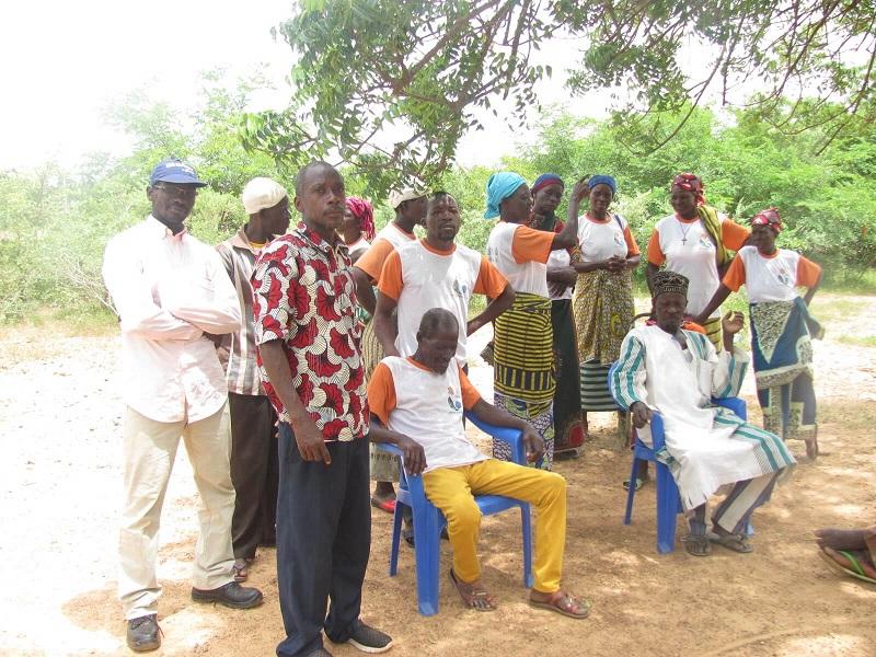 babeilles-afrique-burkina-faso (5)(1)